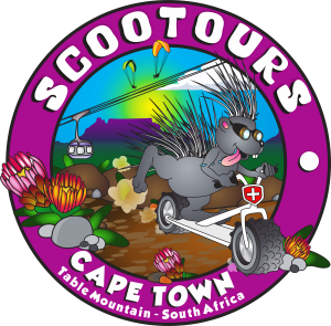MMS Capetown